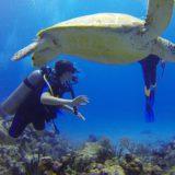 S'offrir des vacances plongée au Costa Rica