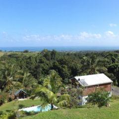 Une aventure inoubliable en Guadeloupe