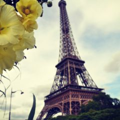 A la découverte de Paris et ses merveilles